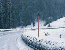 Snow Pole - Flag